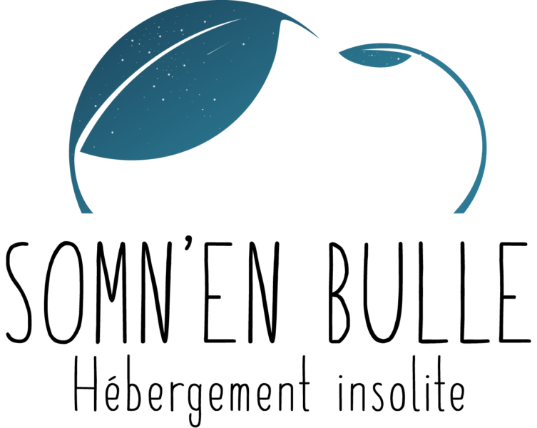 https://www.noct-enbulle.fr/wp-content/uploads/2019/05/somnenbulle-logo-etoile-753x600.png